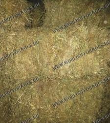 пшеничная